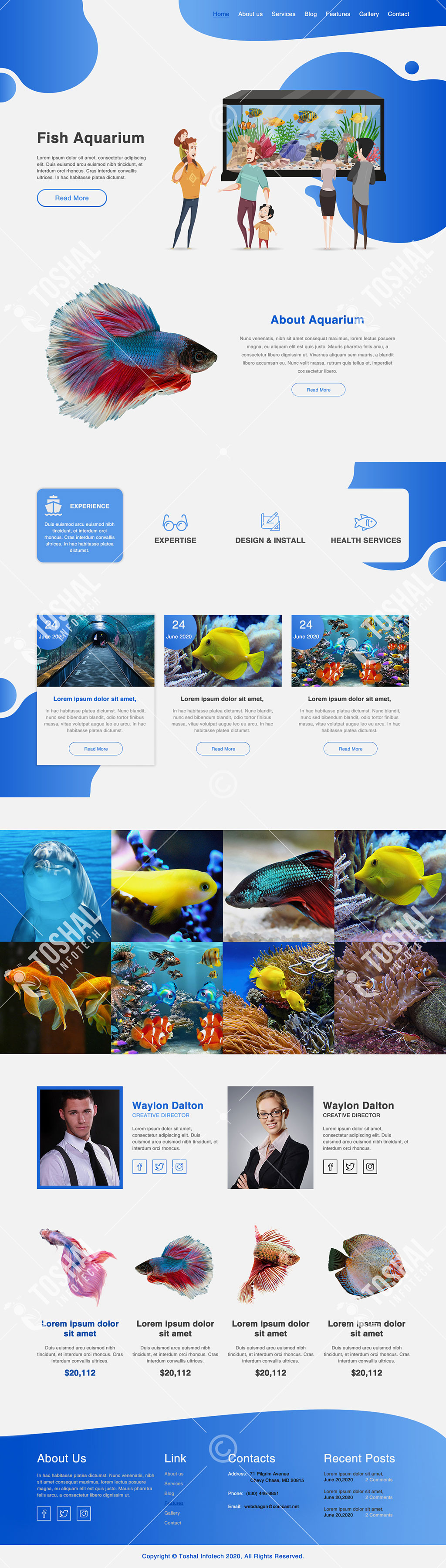 Fish Aquarium Theme